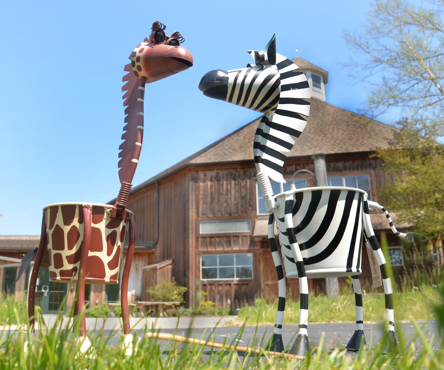 """Giraffe and Zebra Metal Planters"